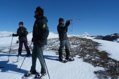 agentes medioambientales de la Junta de Castilla y León buscando uno de los dos ejemplares de urogallo cantábrico