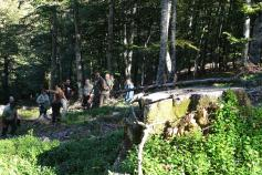 Intercambio LIFE+ Urogallo cantábrico con Polonia en la ZEPA Vega Liébana (Cantabria)